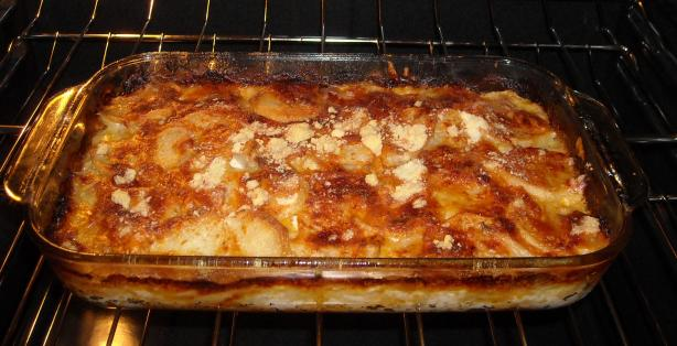 Cheesy Scalloped Potatoes. Photo by boerbabe