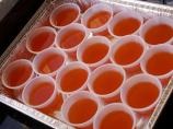 Fuzzy Navel Jello Shots