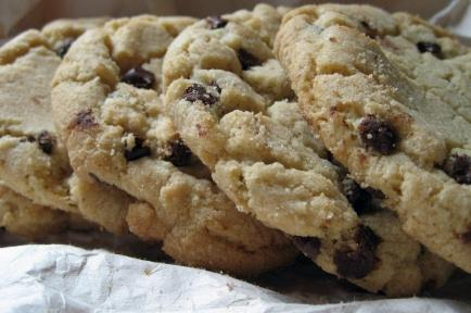Blue Ridge Mountains Chocolate Chip Cookies. Photo by Southern Polar Bear