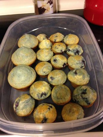Bisquick Blueberry Muffins. Photo by gigip78