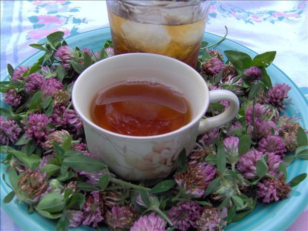 Red Clover Tea. Photo by Sharon123