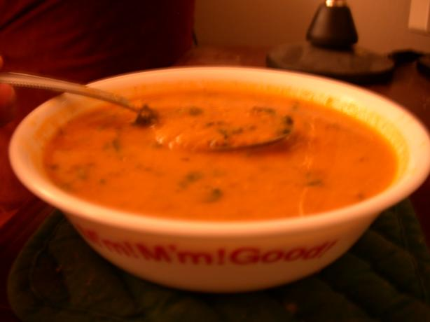 Red Lentil, Tomato and Spinach Soup. Photo by Michelle from Central Time