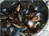 Rheinisches Muschelessen (Rhenish Mussel Meal)