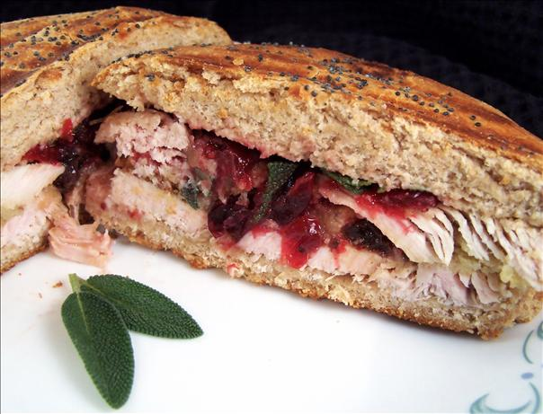 Turkey/ Cranberry/ Dressing Panini. Photo by PaulaG