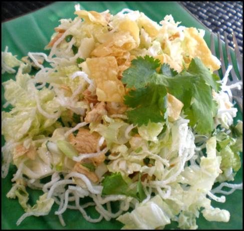 Chinese Chicken Salad. Photo by Sandi (From CA)