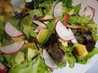 Avocado Radish Salad. Recipe by MsPia