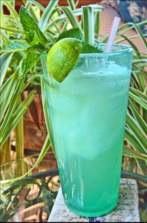 Mojito Del Sol. Photo by Bev