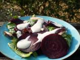 Roasted Beet Salad With Horseradish Cream Dressing