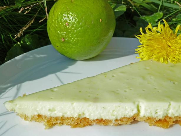 Easy Refrigerator White Chocolate Lime Pie (No-Bake). Photo by awalde
