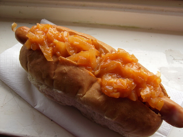 New York Hot  Dog Cart Onion Sauce. Photo by Frugal Fifer