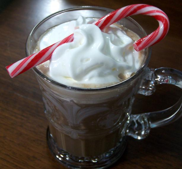 Hot Chocolate With Peppermint Schnapps. Photo by Rita~