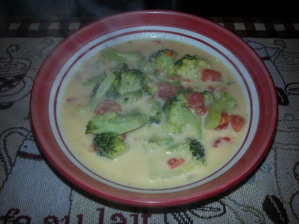 Weight Watchers Broccoli Cheese Soup - 2 Pts Per Cup. Photo by Sturren