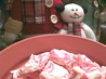 Mccormick's Peppermint Bark