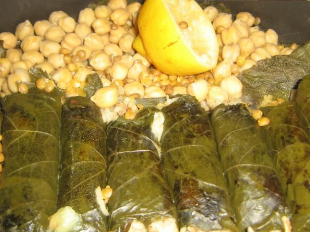 Stuffed Grape Leaves (Dolmades). Photo by Jamilahs_Kitchen