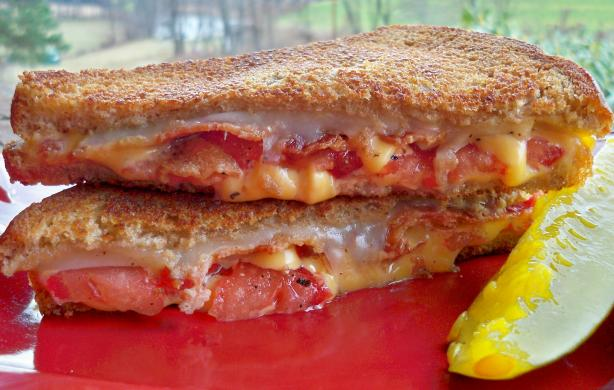 Bacon and Tomato Grilled Cheese Sandwich. Photo by Lainey6605