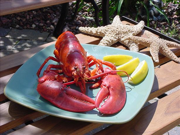 Grilled Lobster. Photo by ~In*Memory*of*Brats~