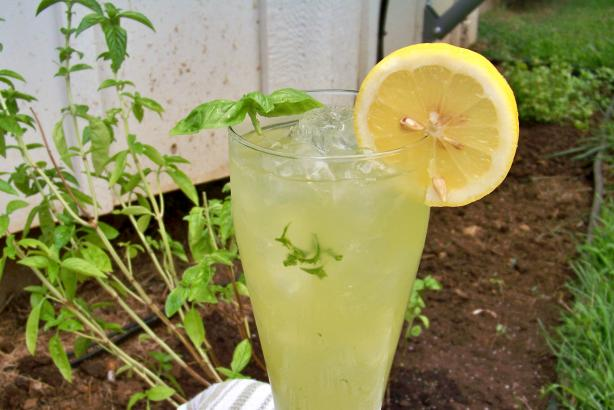Basil Lemonade. Photo by Prose
