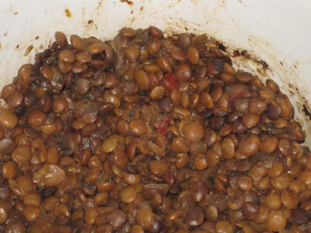 Vegetarian Lentil Taco &#39;meat Filling&#39; Substitute (Crock Pot). Photo by Herb-Cat