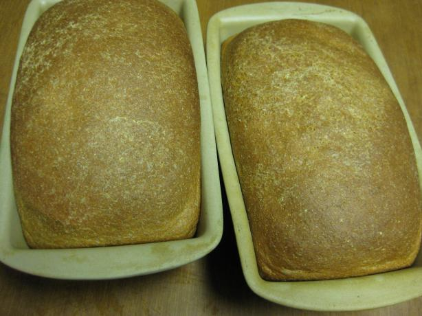 Honey Whole Wheat Bread. Photo by Charlotte J