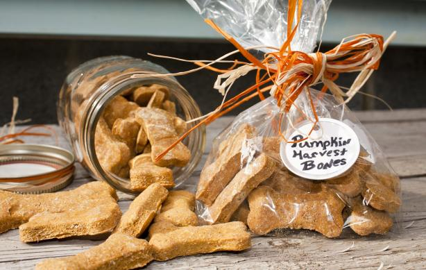 Pumpkin Dog Biscuits. Photo by Red Lab No.27