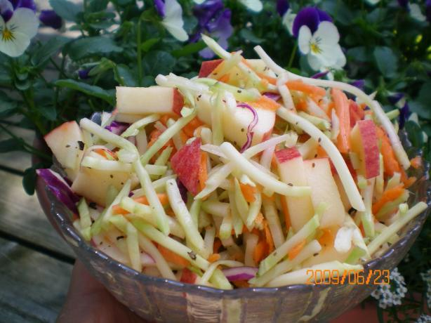 Weight Watchers Apple Cole Slaw (1-Point). Photo by CoffeeB