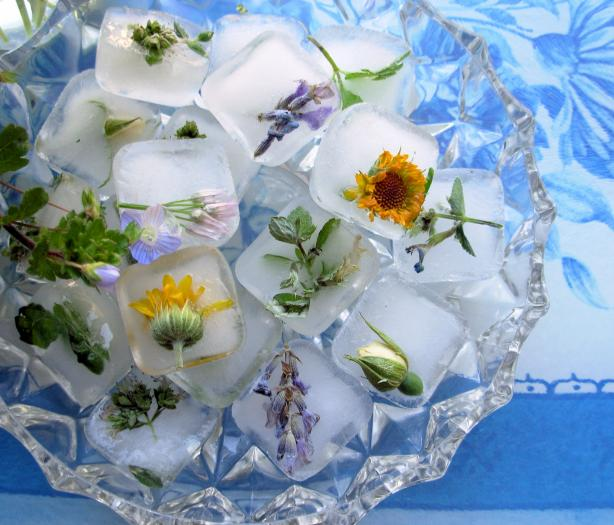 Flowers and Posies Frozen in Time! Fresh Floral Ice Cubes. Photo by French Tart