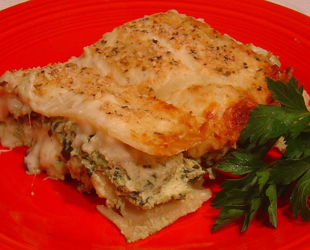Creamy Spinach Lasagna. Photo by :(