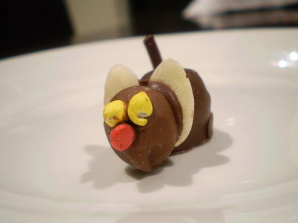 Chocolate Mice, Aussie Style. Photo by mummamills