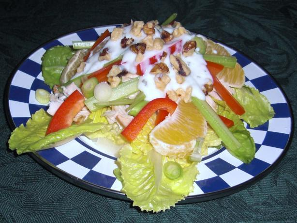 Chicken and Orange Salad. Photo by KateL