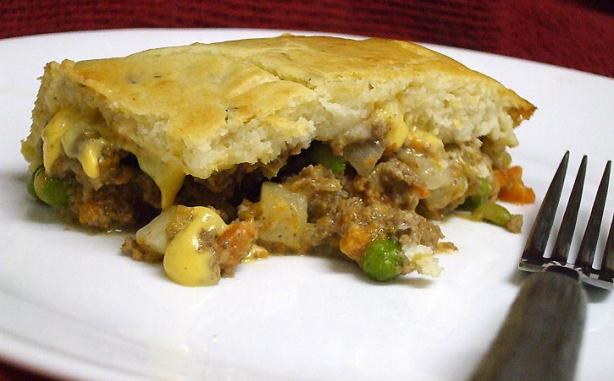 Ye Ol' New Beef Pot Pie. Photo by VickyJ
