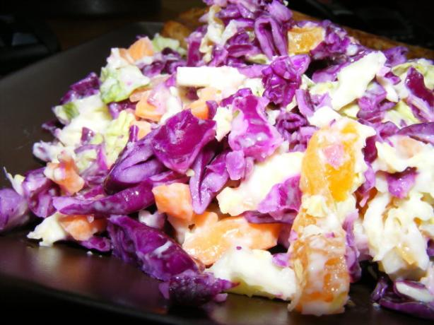 Red Cabbage and Fruit Slaw. Photo by Sarah_Jayne