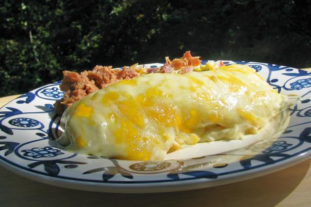 Lisa&#39;s Sour Cream Chicken Enchiladas. Photo by lazyme
