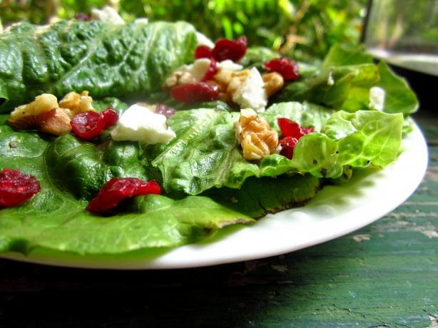 Spring Mix With Walnuts, Cranberries and Goat Cheese. Photo by gailanng