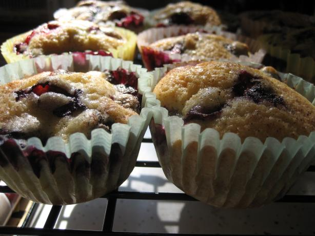 Blueberry Muffins. Photo by christenjaye