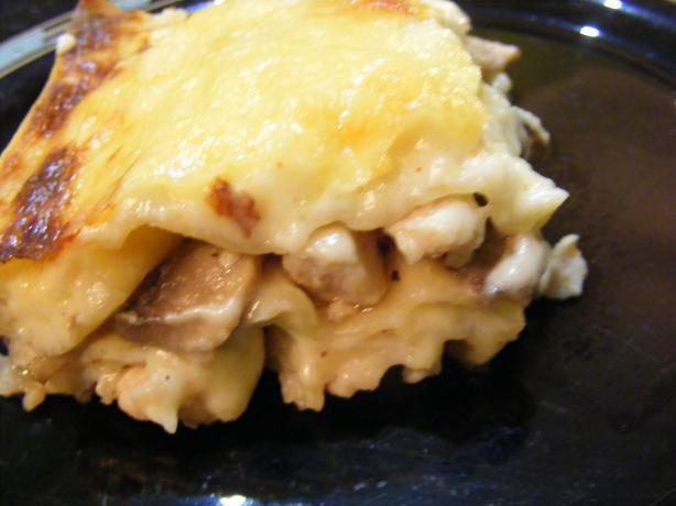 Chicken & Mushroom Lasagne. Photo by Sara 76