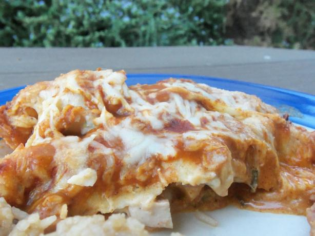 Creamy Cheesy Chicken Enchiladas. Photo by AZPARZYCH