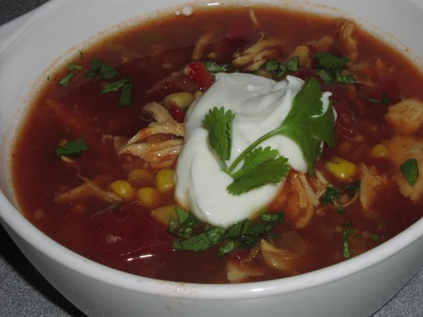 Crock Pot Chicken Tortilla Soup. Photo by TeresaS