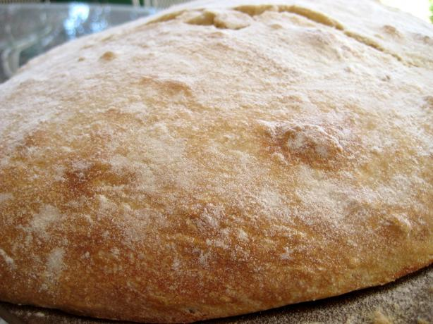 No-Knead Ciabatta. Photo by gailanng