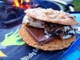 Oatmeal Chocolate Chip Raisin Cookie S&#39;mores