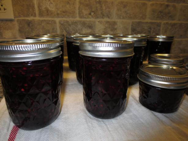 Homemade Blackberry Jam. Photo by Roseann0617