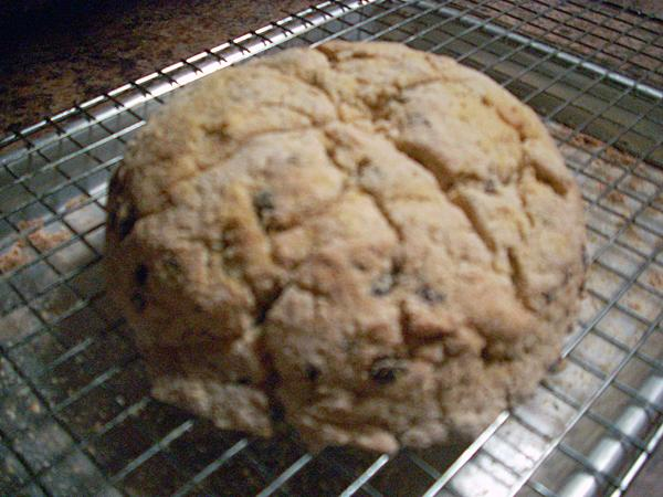 Gluten-Free, Dairy Free Irish Soda Bread. Photo by Chef Joey Z.