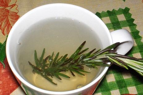 Rosemary Tea. Photo by the80srule