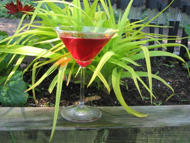 Pomegranate Martini. Photo by K9 Owned