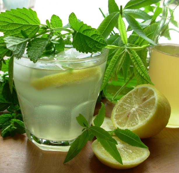 Old Fashioned Lemon Balm and Lemon Verbena Lemonade Syrup. Photo by French Tart