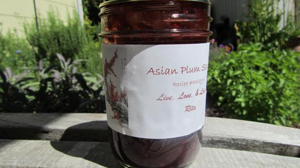 Asian Plum Sauce for Canning. Photo by Rita~