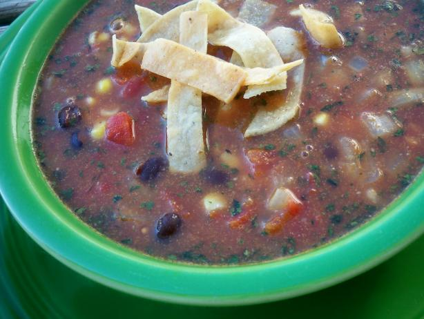 Crockpot Black Bean Tortilla Soup. Photo by *Parsley*