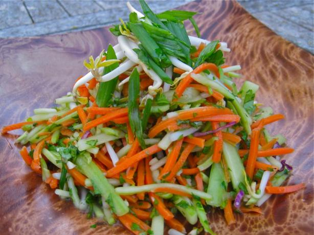 Vegan Carrot Broccoli and Bean Shoot Salad. Photo by The Blender Girl