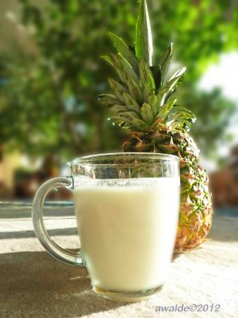 Frosty Pineapple Nog. Photo by awalde