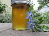 Borage Cucumber Jelly With Ginger