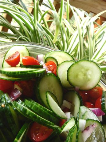 Tomato Cucumber Onion Salad. Photo by Bev